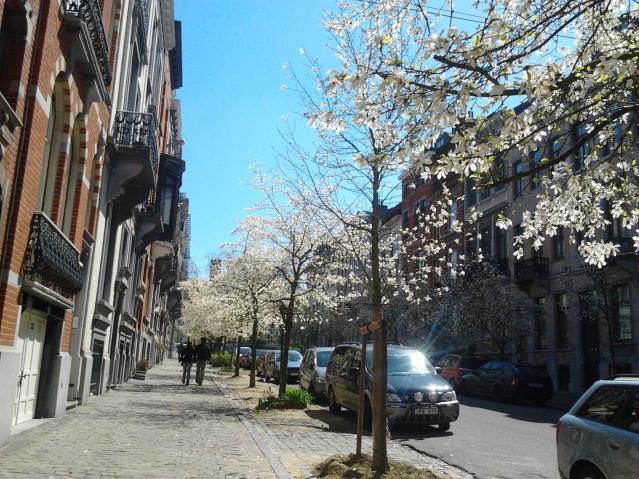 Spring in Brussels