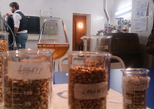 "By breaking malt grain, you will release starch from the grain's shell, or husk Choisissez le grain qui va ""malter"" votre bière"