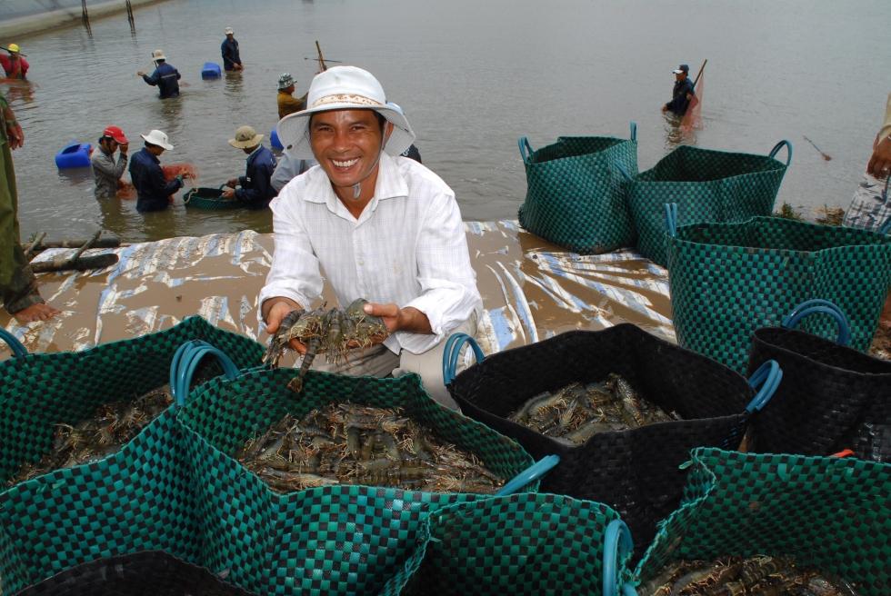 farming-shrimp_asc-farm-workers_2
