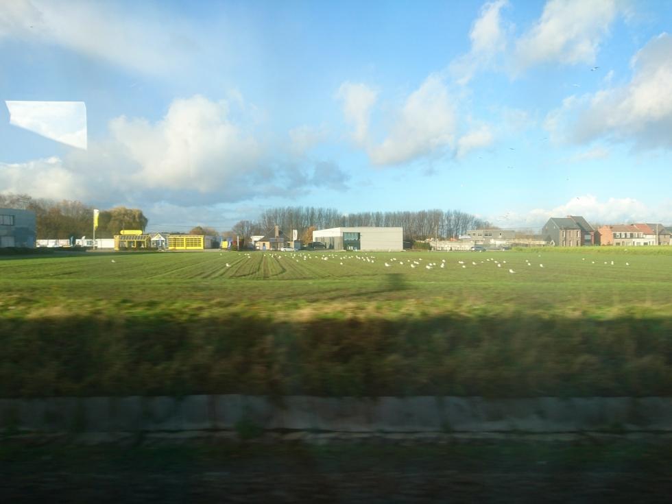 travelling by train .jpg